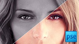 Master Adobe Photoshop Elements 12 the Easy Way - 14 Hours Udemy Coupon & Review