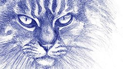 Drawing Animals: From Anatomy to Rendering Udemy Coupon & Review