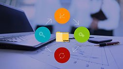 Risk Management for Project Professionals Udemy Coupon & Review