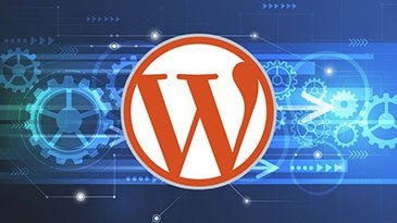 How to Optimise Your WordPress Website's Speed & Security to Improve SEO & User Experience Udemy Coupon & Review