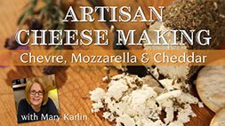 Artisan Cheese Making Class Craftsy Review