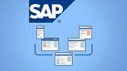 SAP Basis Essentials - Become a Great SAP Basis Consultant Udemy Coupon & Review