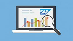 Learn SAP BEx Analyzer - 2014 Academy Training Course Udemy Coupon & Review