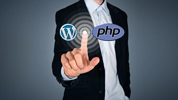 Professional WordPress Theme Development For 2016 Udemy Coupon & Review