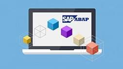 Learn SAP ABAP Objects - 2014 - Online Training Course Udemy Coupon & Review